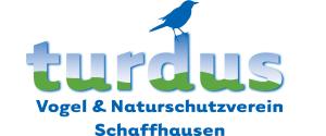 Logo turdus