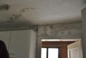 Erdgeschoss 2 Küche Schaden